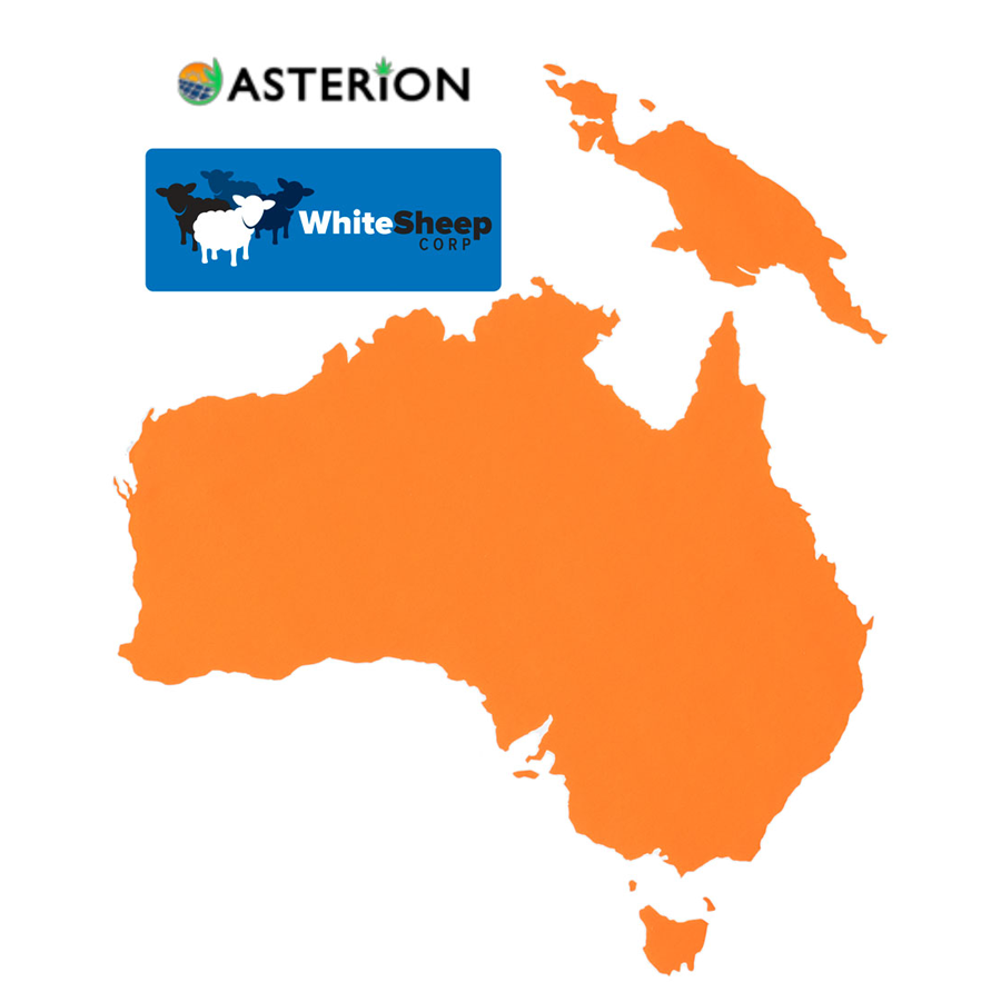 White Sheep Expands Operations to Australia
