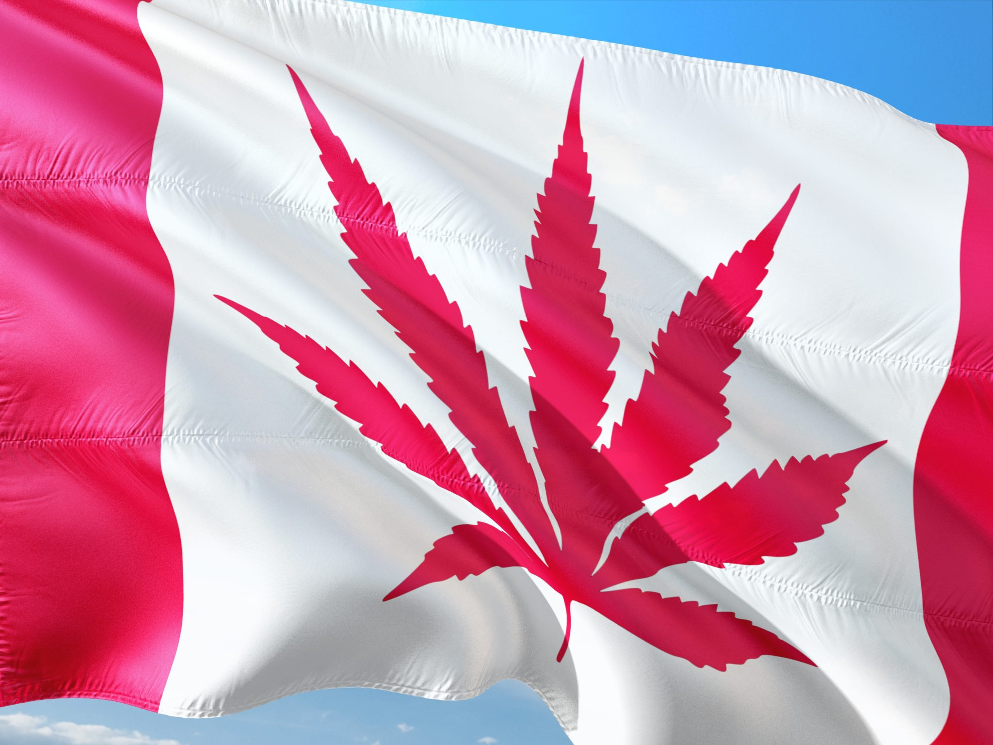 Ministry of Hemp: CBD In Canada: Why Can't I Easily Get Legal CBD In Canada?
